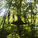 Visita colegios Selva Asturiana