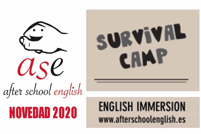 hazteunbus.es - Campamentos Inmersión Lingüística en Inglés para Estudiantes en Asturias 1